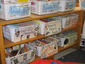 Allyson and Deanna's visually enhanced baskets enticed readers to choose in a variety of ways.